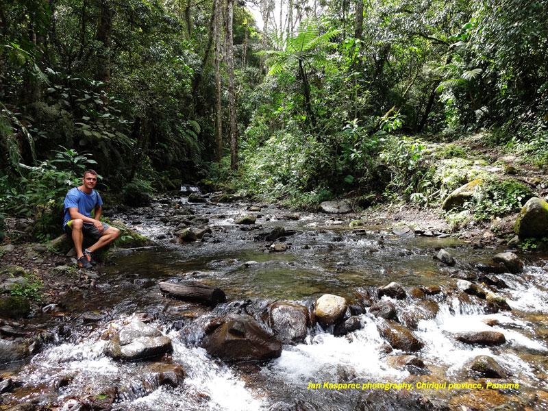 Chiriqui-boquete-sendero-de-los-quetzales.jpg, 464kB