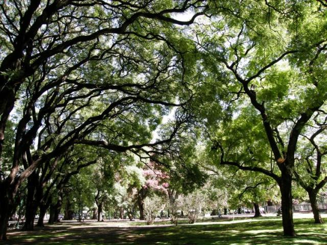 Buenos Aires 2009 photo no. 17