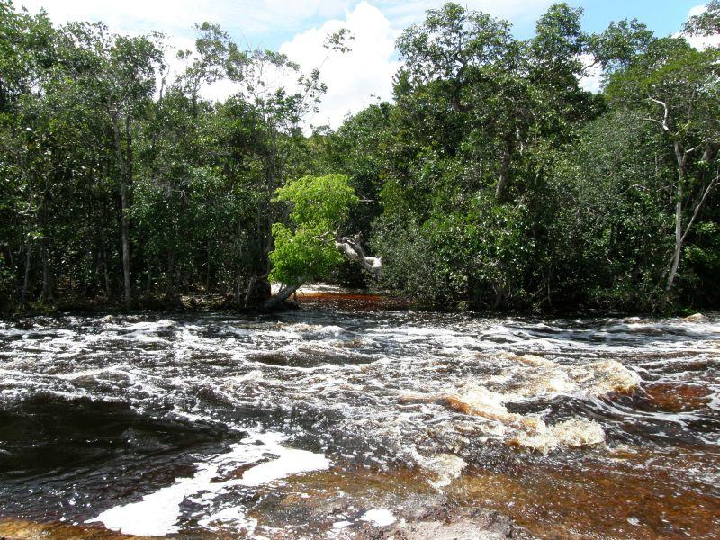 Krása pralesní řeky 2 - Brazílie- Amazonie a Manaus