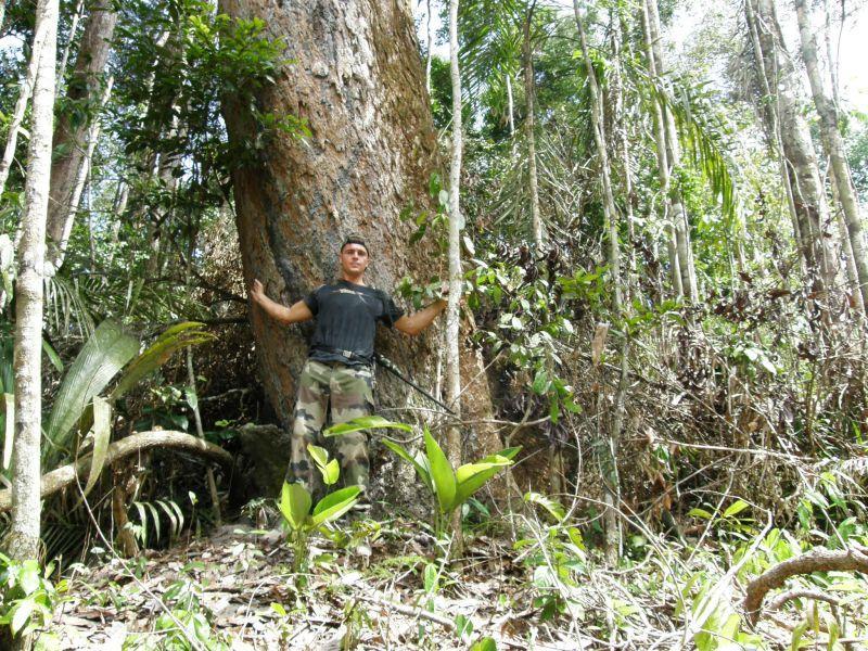 nekácejte mého kamaráda... - Brazílie- Amazonie a Manaus