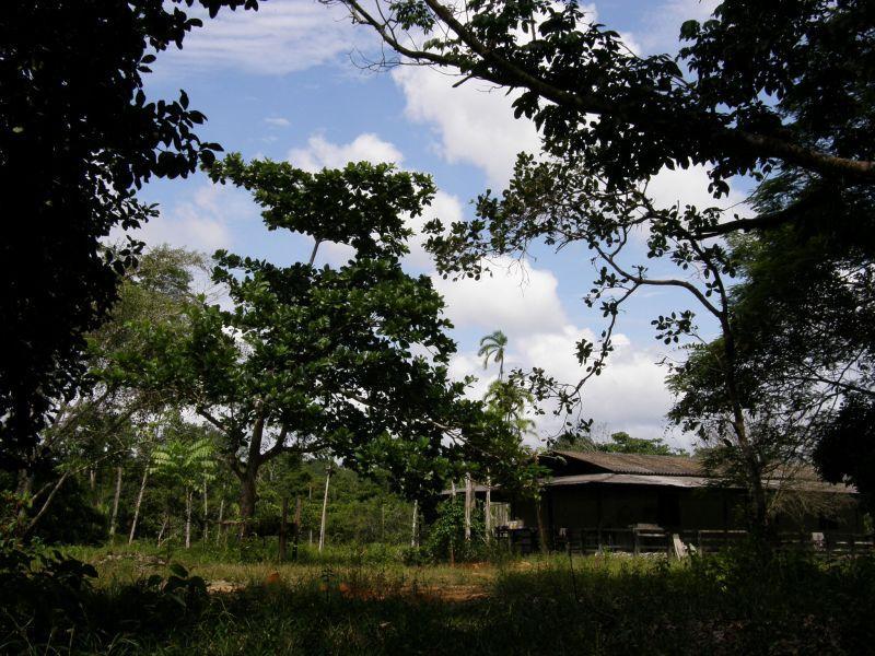 opuštěný dům v džungli - Brazílie- Amazonie a Manaus