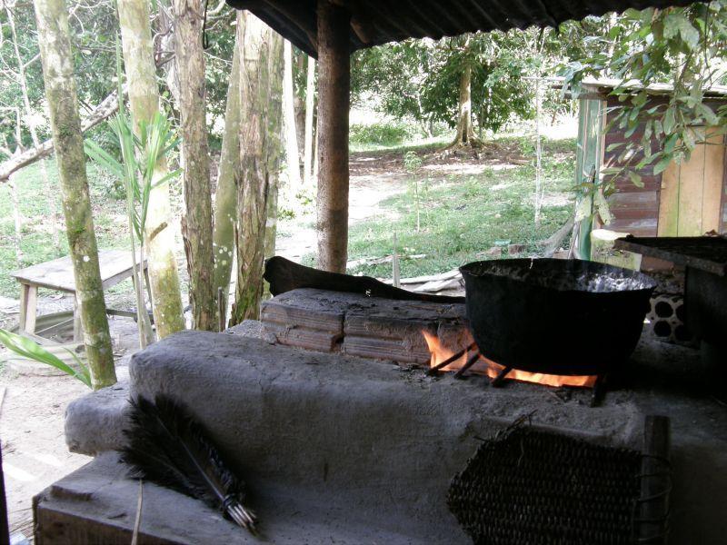 polívčička - Brazílie- Amazonie a Manaus