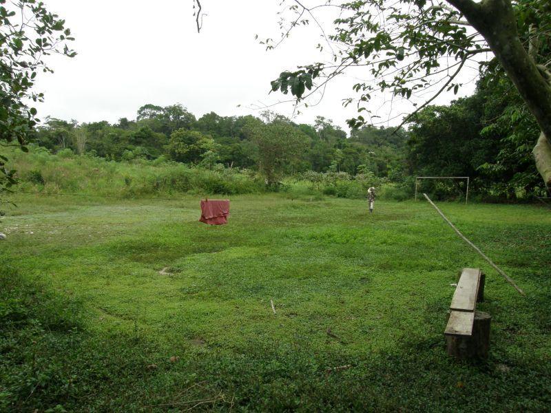 Pralesní hřiště - Brazílie- Amazonie a Manaus