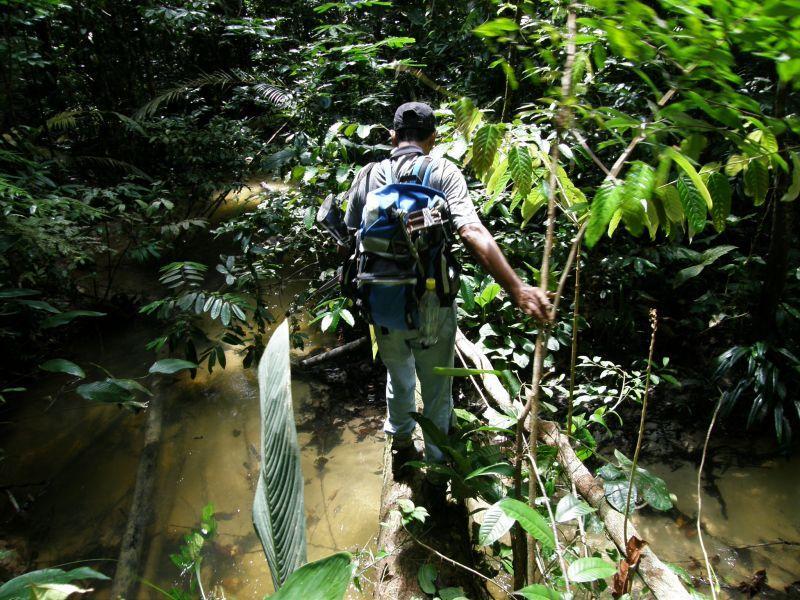 Ve stopách Raimunda přes řeku - Brazílie- Amazonie a Manaus