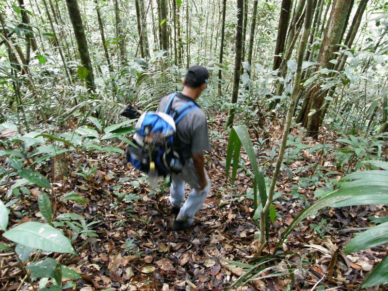 Ve stopách Raimunda vzhůru do selvy - Brazílie- Amazonie a Manaus