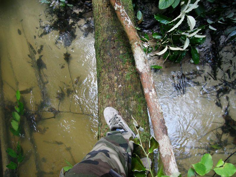 Ve stopách Raimunda vzhůru do selvy 3 - Brazílie- Amazonie a Manaus