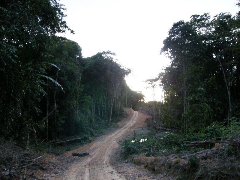 večer jsme dorazili na cestu k příbytku v pralese - Brazílie- Amazonie a Manaus