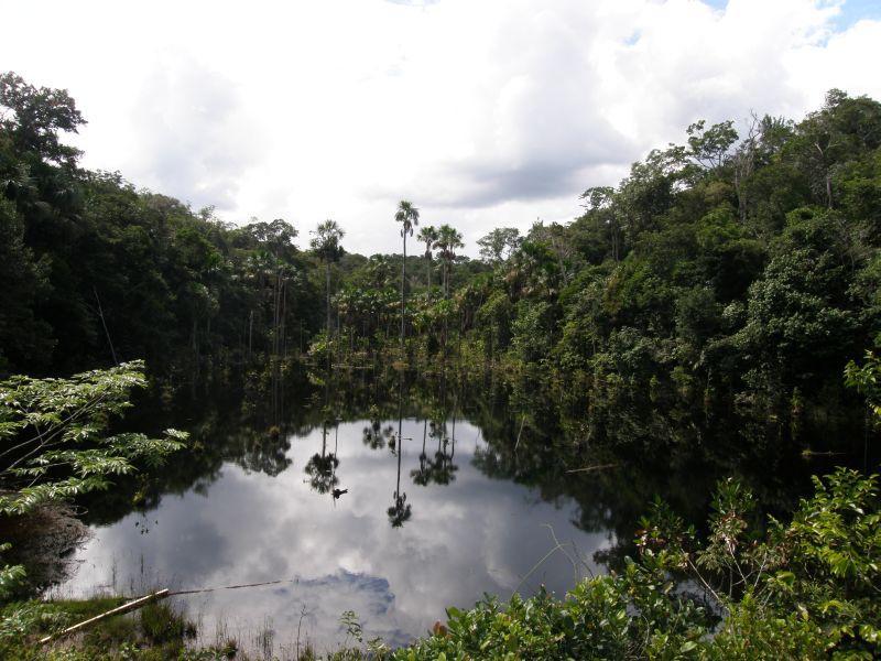 Vhled - Brazílie- Amazonie a Manaus