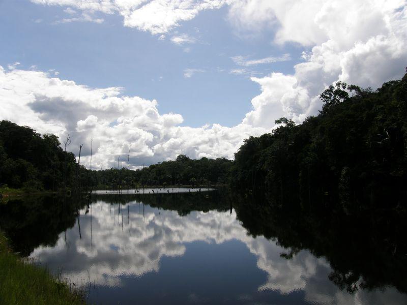 Vhled do pralesa - Brazílie- Amazonie a Manaus