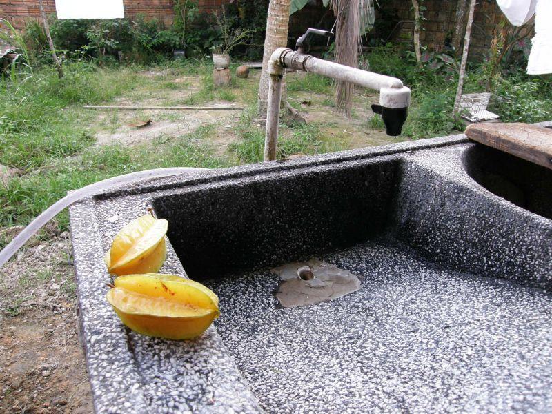 Zátiší v zahradní kuchyni s tropickým ovocem - Brazílie- Amazonie a Manaus