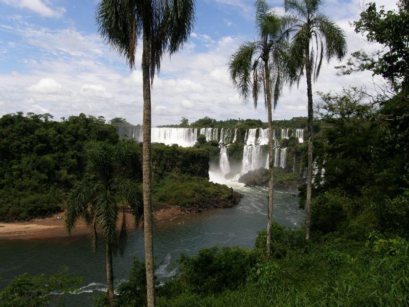 Vodopády Iguazu za palmami - Vodopády Iguazu (Argentina)
