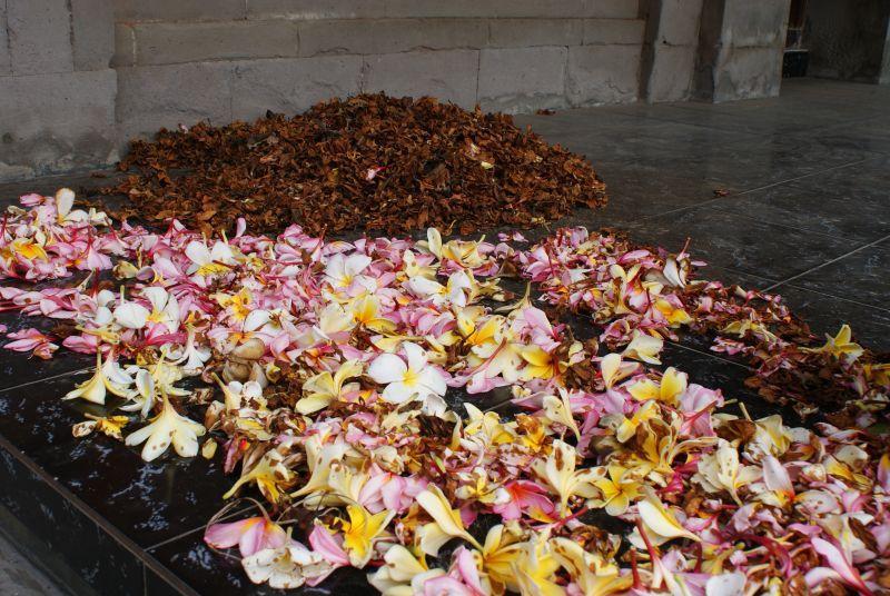 Ceremoniální květy - Indonésie- Bali