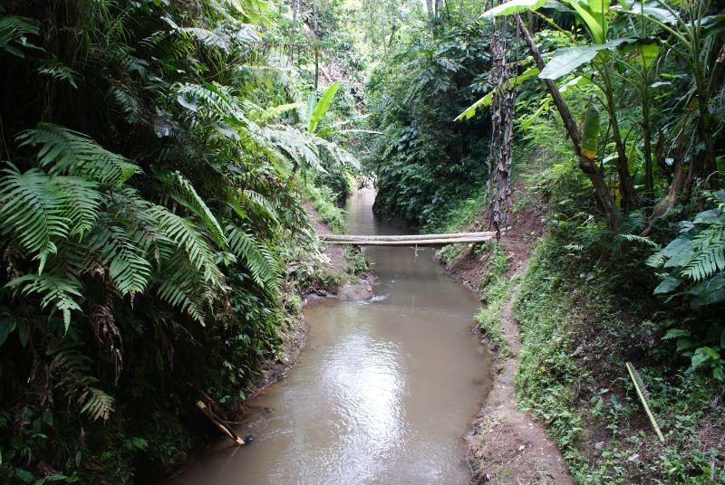 Lávka přes lesní říčku - Indonésie- Bali