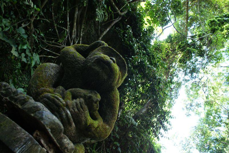 Opičí strážce - Indonésie- Bali