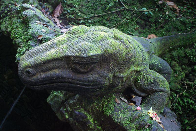Varani z kamene, jako živí 4 - Indonésie- Bali