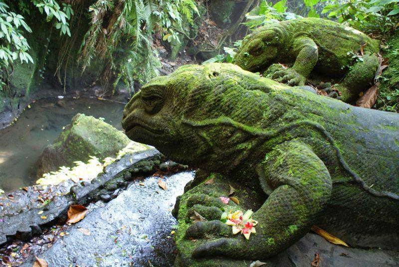 Varani z kamene, jako živí 5 - Indonésie- Bali