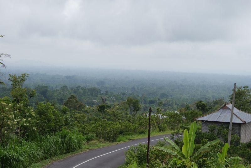 za cestou je prales... - Indonésie- Bali