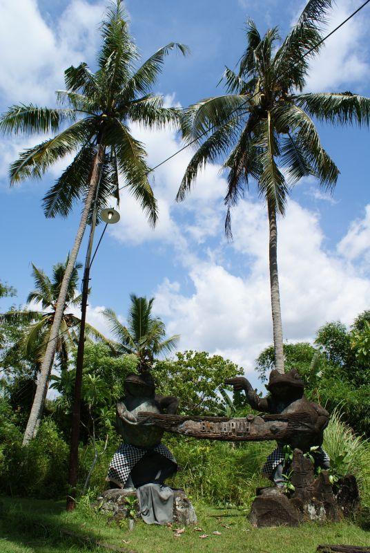 žáby 2 - Indonésie- Bali