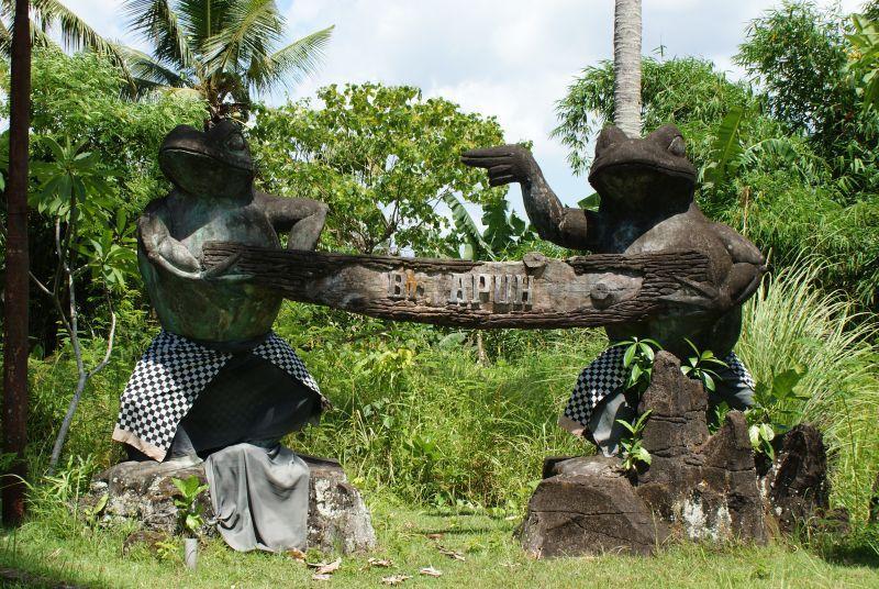 žáby - Indonésie- Bali