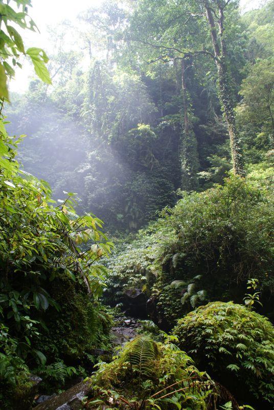 Světlo v páře vodopádů 2 - Indonésie- Lombok