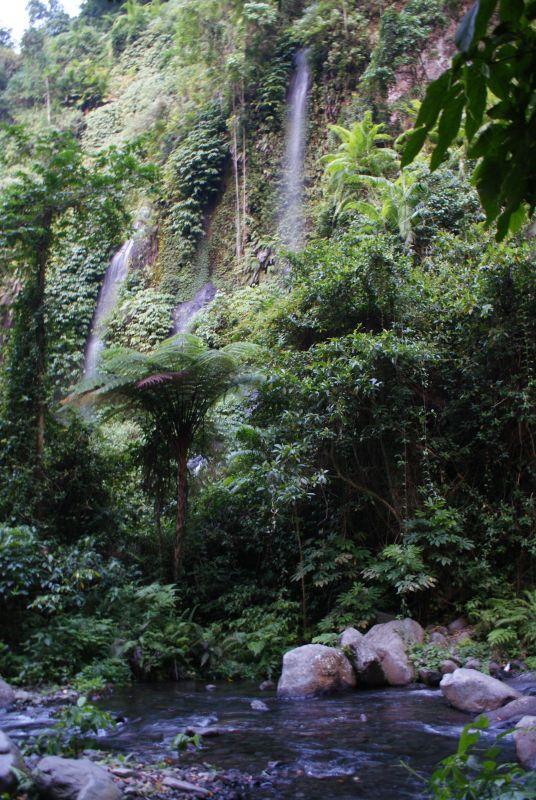 Voda se dere porostlým převisem 2 - Indonésie- Lombok