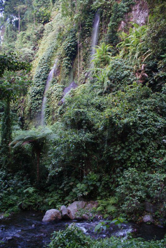 Voda se dere porostlým převisem - Indonésie- Lombok