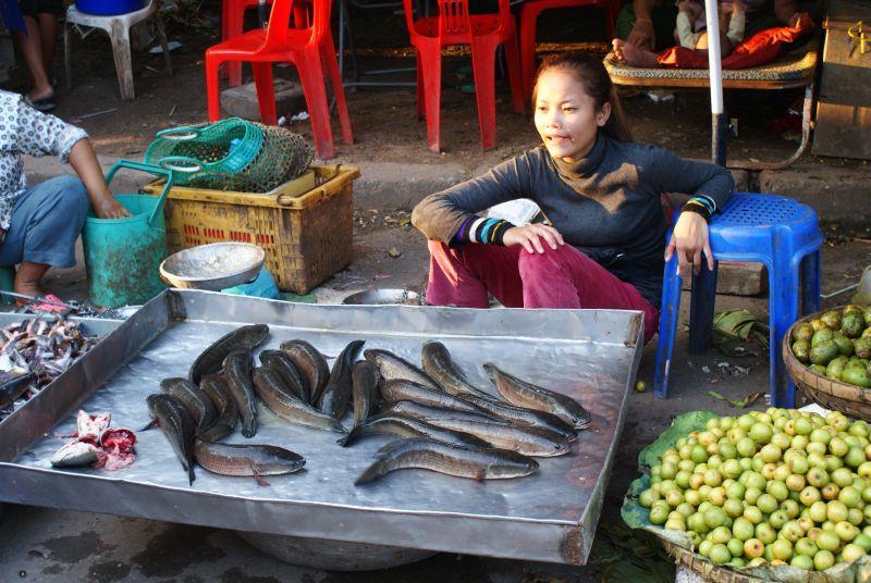 Tržiště 2 - Kambodža- Phnompenh a okolí