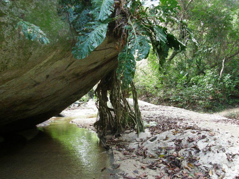 cestou lesem do Pueblita - Kolumbie