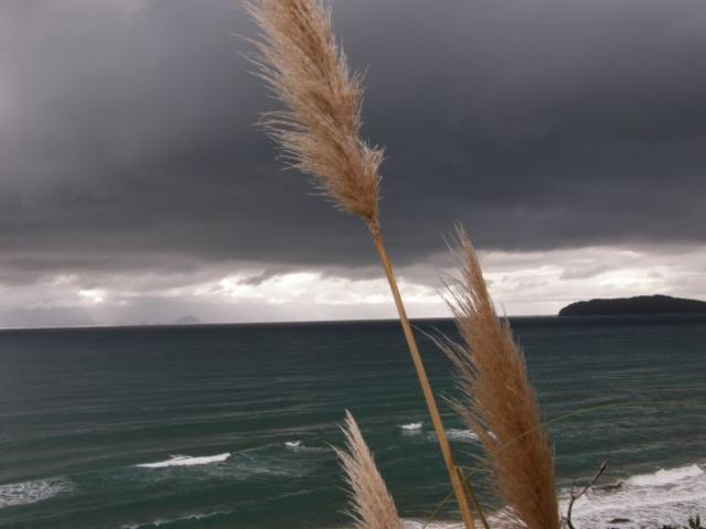 Barvy Coromandel Peninsula - Nový Zéland