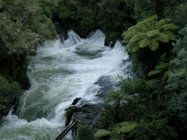 Okere Falls 2 - Nový Zéland