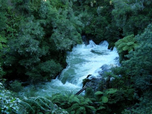 New Zealand photo no. 24