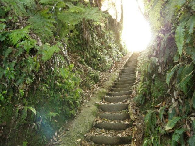 Schody do nebe u Okere Falls - Nový Zéland