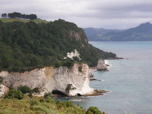 New Zealand photo no. 13