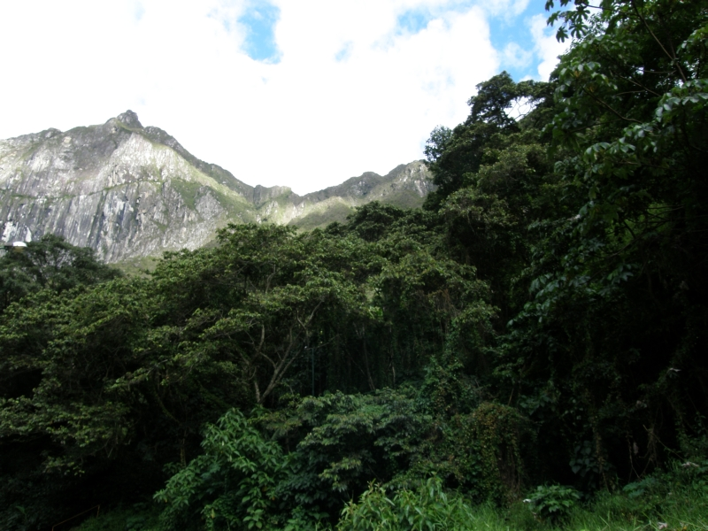 Peru- Machu Picchu and Aguas Calientes photo no. 5