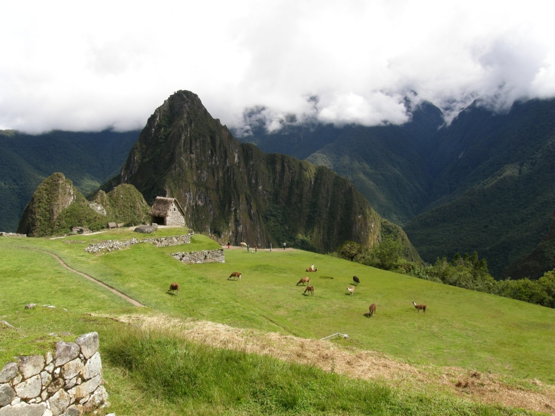 Peru- Machu Picchu and Aguas Calientes photo no. 82