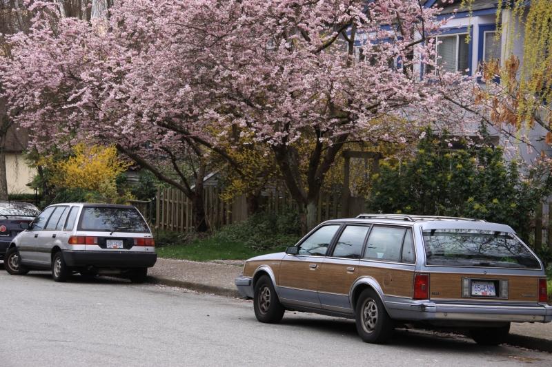 Vancouver spring 2012 photo no. 34