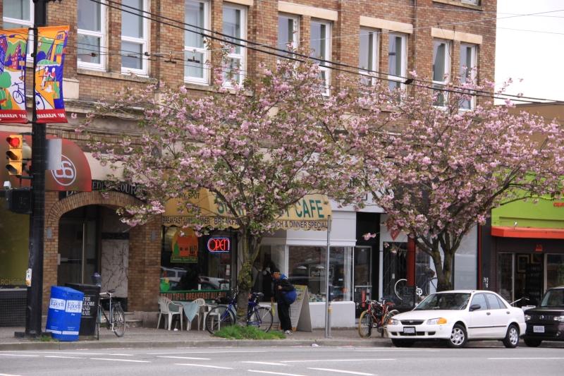Vancouver spring 2012 photo no. 74