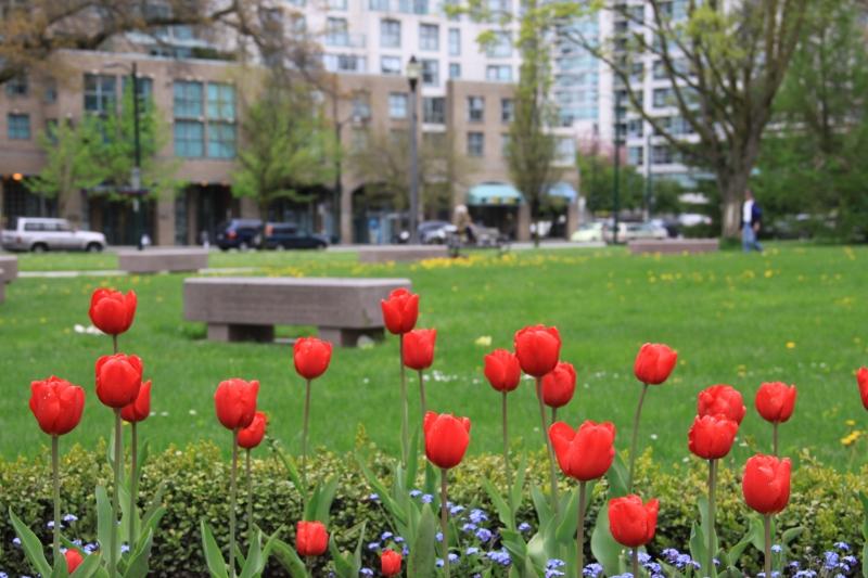Vancouver, jaro 2012 - 79 - Vancouver, jaro 2012