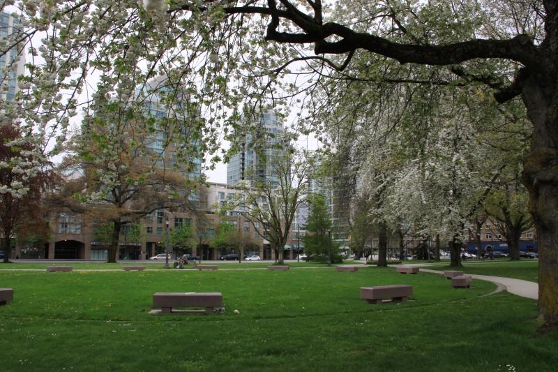 Vancouver spring 2012 photo no. 80