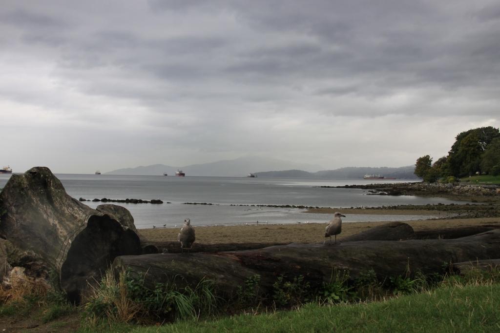 Podzim ve Vancouveru, září 2011 - 29 - Podzim ve Vancouveru, září 2011