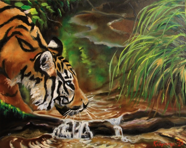 Oil painting - Drinking tiger