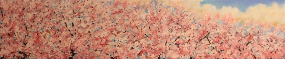 Cherry blossoms - oil painting
