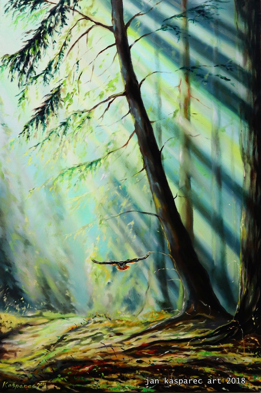 Obraz - Forest Light