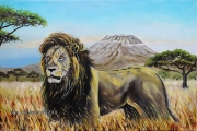 Lion-Silent Grace - olejomalba