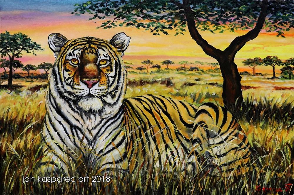 Obraz - Tiger