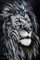 Lion 2 - oil painting