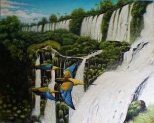 Papoušci a vodopády Iguazu - olejomalba, obraz